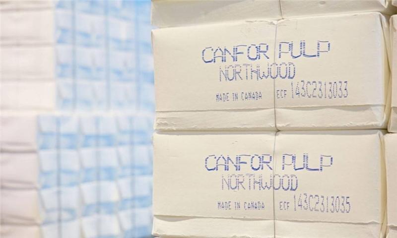 ظرفیت تولید جهانی خمیر کاغذ الیاف کوتاه کرافت سفید شده