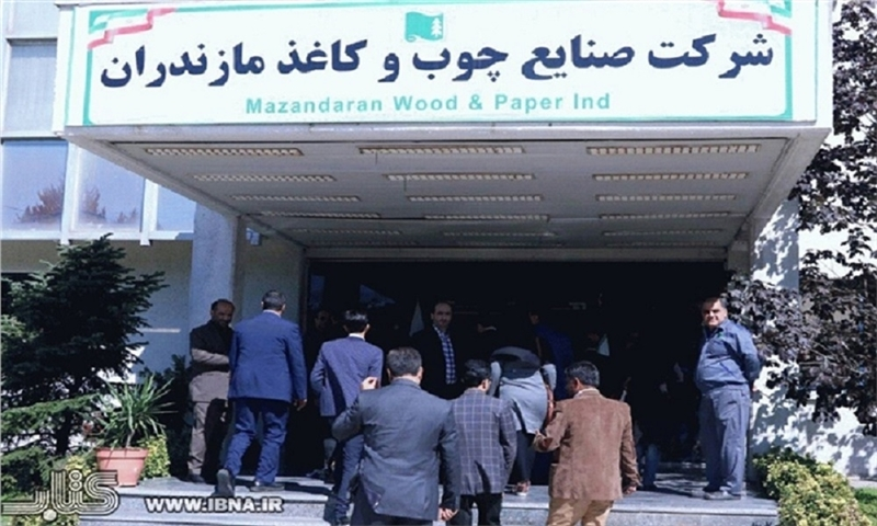 The hope to double paper production in Mazandaran