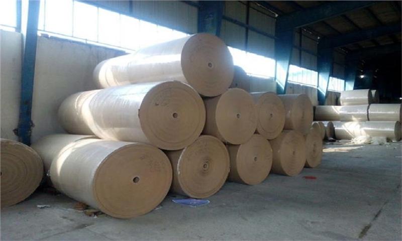 سالانه ۱۲۰ هزار تن انواع کاغذ در اردبیل تولید میشود
