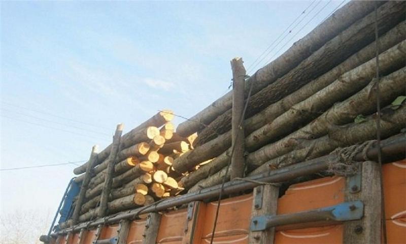 کشف ۱۰ تن چوب قاچاق در نوکنده