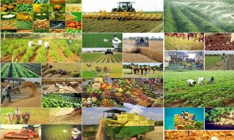 اختصاص ۱۴۰۰ میلیارد تومان اعتبار برای دو پروژه تولیدی در اسدآباد