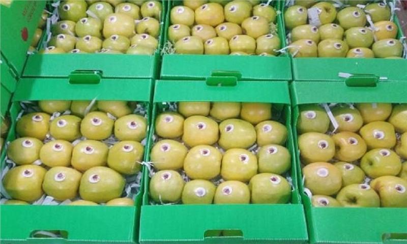 بسته بندی استاندارد، راه ورود محصولات کشاورزی به بازارهای جهانی