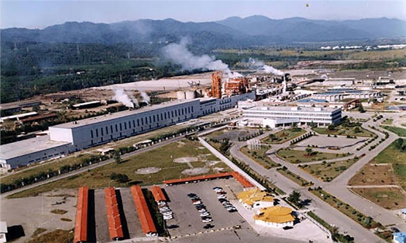 رشد ۱۷۶ درصدی فروش تولیدات صنایع چوب و کاغذ ایران - چوکا