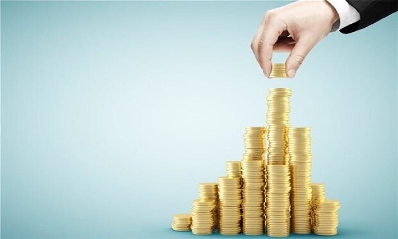 قیمت گذاری دستوری مخل سرمایه گذاری است/ نرخ ارز نباید سرکوب شود
