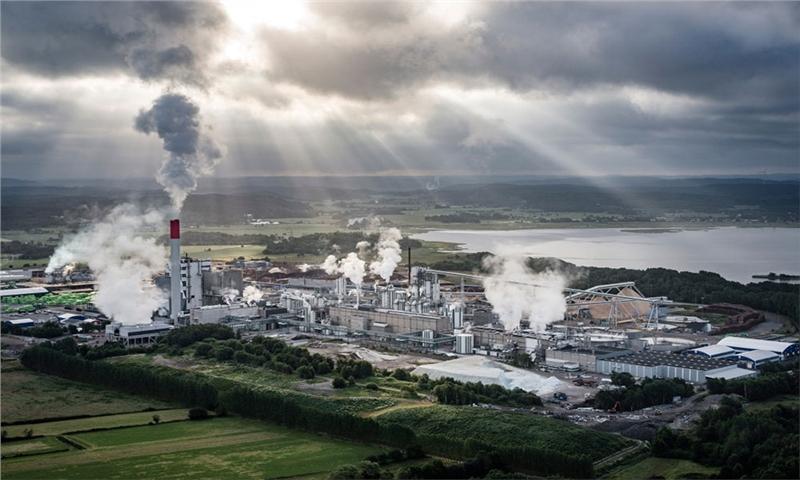 شاخصهای خمیرکاغذ در اروپا – 25 می 2021