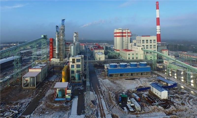 شاخصهای خمیرکاغذ در چین – 29 ژوئن 2021