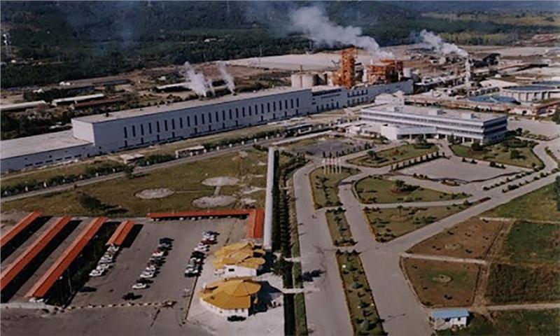 تولید مستمرِ خمیر چوب و انواع کاغذهای کرافت و شبه کرافت در چوکا آغاز شد.